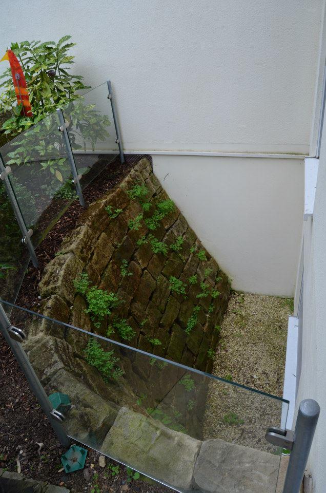 trockemauer11